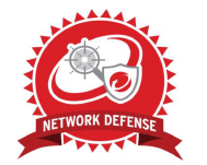 Network defense profesional
